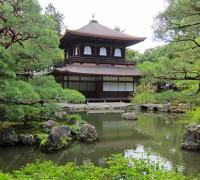 참좋은여행,교토에 오사카, 고베 핵심  '블루보틀' 포함 교토 3일 여행 추천